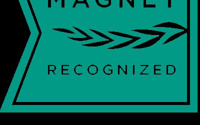 """Les Magnet Hospitals aux Etats-Unis adaptés en France : Les """"hôpitaux aimants"""""""